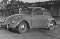 46 beetle