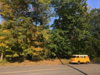 Bus in the leaves