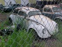 This Mid-weeks VW find(s?)