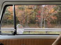 Bay buses in fall / autumn thread
