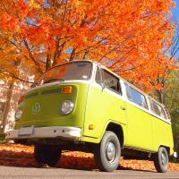 Bus in the Fall