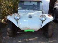 Buggy ID