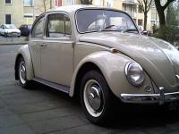 67 Euro bug