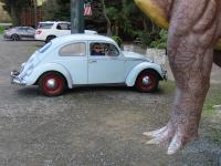 1960 Beetle Out Driving Around with 1679cc