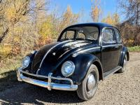 1963 VW Bug - Darrel with a WW headliner kit installed by me (beginner)