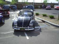 2005 Minnesota Bug In