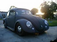 my 63 bug