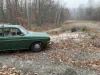 1970 Elm green Squareback