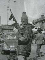 IRA Bug