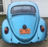US 64 Beetle