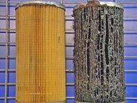 Algae in Fuel filter