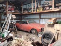 '73 Ghia Vert. barn find