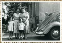 Split Bug and family