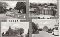 Split Beetles on Insel Nordstrand