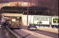 Beerle Billboard