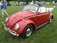 My 65 Beetle at Litchfield