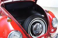 '66 trunk