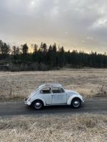 1965 beetle