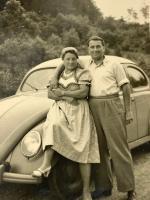 Split Beetle vintage photo