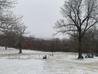 Vw snow