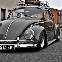 Beetle Respray