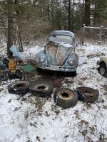 1959 beetle rescue