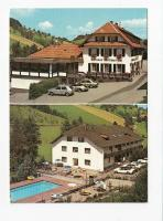 Porsche and Beetle in Prinzbach