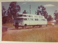 Family Road Train