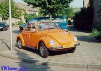 My '74 Bug