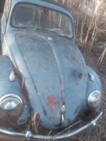 59 Bug NY FS FB
