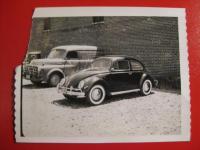 Vintage Beetle Photo