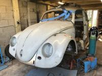 52 Split Beetle