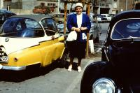Black Bug and other vehicle
