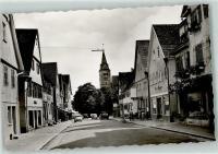 Split Beetles in Welzheim