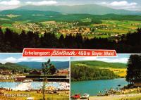 Blaibach Red Squareback