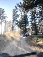 Big Bear area trip report.