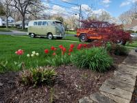 side driveway. 2 of 3 VW's