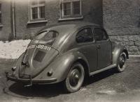 ccg beetle