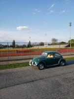 bug with grandstand