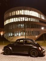 Special Bug by night
