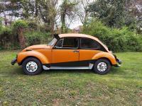 74' super beetle rough concept