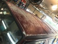 Paint roof