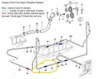 fuel vapor diagram edit