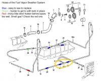 fuel vapor lines