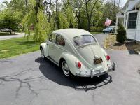 Mike's 64 Bug