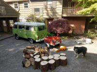 Fresh Madrone fire wood