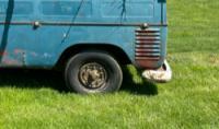 rear metal