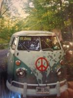 Our  1964 bus