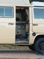 murphy in van