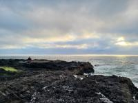 """""""Thor's Well"""" (and surrounding shore) near Yachats, OR"""